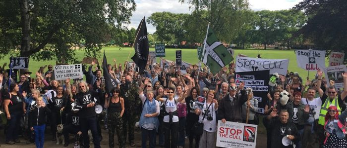 anti badger cull marchers in Taunton's Vivary Park following a march